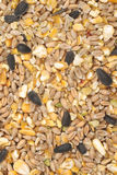 Bird seed mix Royalty Free Stock Photography