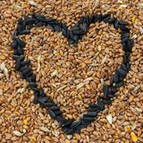 Bird seed with sunflower seed heart shape royalty free stock photography