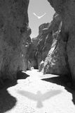 Bird shadow canyon. A dark shadow from a white bird lies on a rocky pathway, reaching through wavy shadowed rocks royalty free stock images