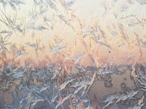 Bird shape frost ice crystals formations on a window glass. Frostwork pattern on morning light pink sunny sky background. Bird shape frost ice crystals stock photo