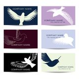 Bird shapes and cards Royalty Free Stock Image