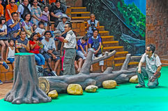 Bird show at ocean park hong kong Stock Photos