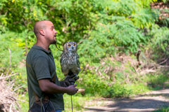 Bird show in Szeged Zoo Stock Photos