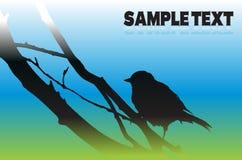 Bird silhouette. Vector illustration wallpaper Stock Images