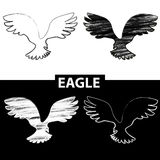 Bird silhouette. Black and white drawing eagle Stock Images