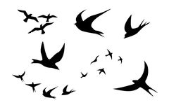 Bird silhouette clipart Royalty Free Stock Images
