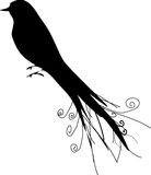 Bird Silhouette Illustration. A fully scalable vector illustration of a black bird Silhouette stock illustration