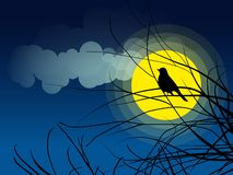 Bird silhouette sitting on a tree branch background of the moonlight stock illustration