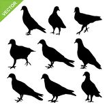 Bird silhouettes vector Royalty Free Stock Image