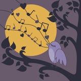 Bird-singing. Vector illustration of birds singing on a brunch at night Stock Images