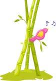 Bird singing on babboo tree Stock Photos