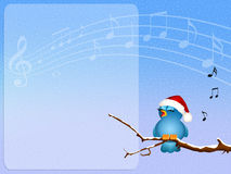 Bird singing on branches Royalty Free Stock Photos