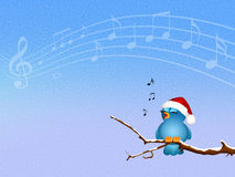 Bird singing on branches Royalty Free Stock Image