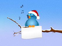 Bird singing on branches Royalty Free Stock Images