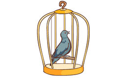 Bird singing in the cage  Stock Images