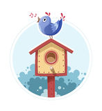 Bird sit and sing on nesting box Stock Photo