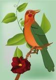 Bird sitting Stock Photo