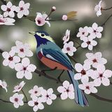 Card design, bird and flower Royalty Free Stock Images