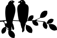 Bird sitting on branch Stock Image