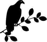 Bird sitting on branch Stock Photography