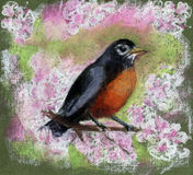 Bird sitting on flowering branch Royalty Free Stock Photo