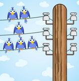 Bird sitting on a high-voltage wires - vector. Cheerful bird sitting on a high-voltage wires - vector eps8 Stock Photo