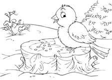 Bird sitting on a stump Royalty Free Stock Photography