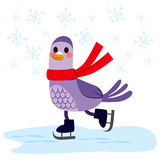 Bird Skating Ice Royalty Free Stock Images