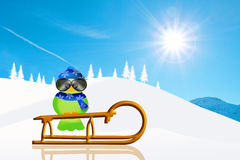 Bird on sled Stock Image