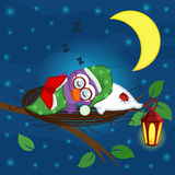 Bird sleeps in a nest. Vector illustration, eps Stock Images