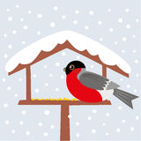 Bird and snow Stock Images