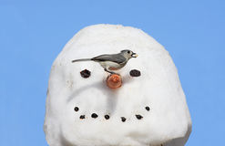 Bird On A Snowman Royalty Free Stock Images