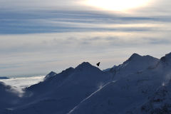 The bird soars in the sky amid the mountain scenery. Jackdaw flies in the mountains. Stock Image
