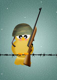 Bird soldier Stock Photos
