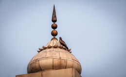 Bird on a spire of Red Fort, Delhi - India. Bird on a spire of Red Fort, New Delhi - India Stock Image