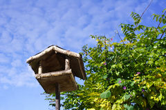 Bird or Squirrel Feeder. Wooden platform with roof, bird or squirrel feeder, next to bushes, blue sky and soft clouds Royalty Free Stock Photos