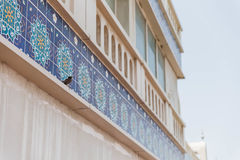 Bird Stand in Front of Blue Arabic Tiles Royalty Free Stock Photo
