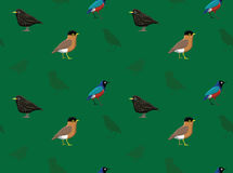 Bird Starling Wallpaper Royalty Free Stock Images
