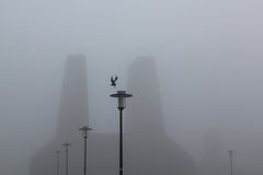 Bird and street lamps in the the mist, fog. Bird and a row of street lamps in the mist, fog. Background stock images