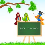 Bird Student and Teacher Royalty Free Stock Photography