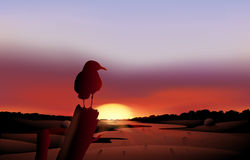 A bird in a sunset view of the desert Royalty Free Stock Photo