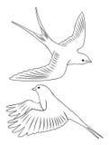 Bird swallow. The figure shows a bird swallow Stock Photo