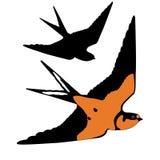 Bird swallow realistic  black silhouette Stock Photo
