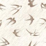 Bird swallow set. Bird swallow seamless vintage set. Vector illustration poses isolated on white Royalty Free Stock Image