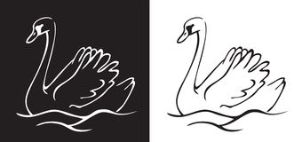 Bird Swan on a black and white background royalty free illustration