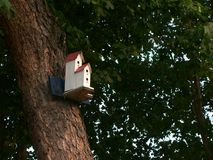 Bird Sweet Home. Bird house on a tree royalty free stock photos