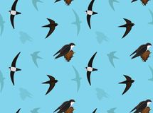 Bird Swift Wallpaper Royalty Free Stock Photos