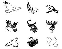 Bird symbols Stock Images
