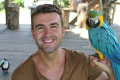 Bird tamer working with a macaw.  stock photo