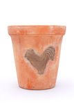 Bird on Terracotta Flower Pot Royalty Free Stock Photos